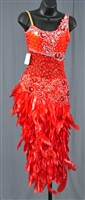 Red Lace Feather Dress Latin Dress