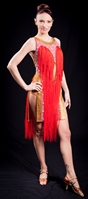 Sexy Gold & Red Fringe Latin Dress