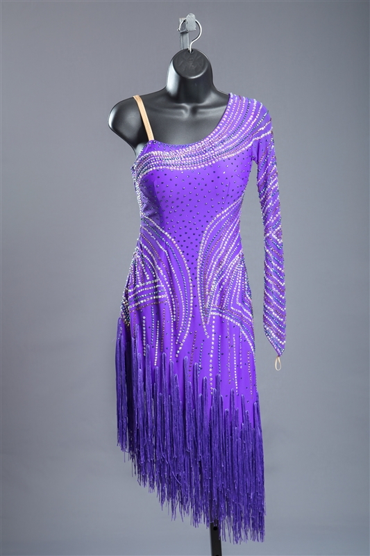 Elegant Purple Fringe Latin Dress